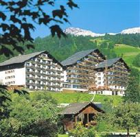 Alpenhotel Dachstein Bad Goisern