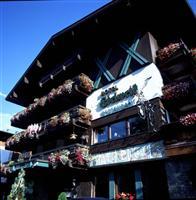 Edelweiss Hotel Saalbach Hinterglemm