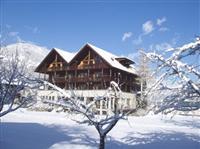 Innerwiesn Apartment Mayrhofen