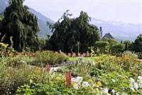 Kitzhof Mountain Design Resort Kitzbuhel