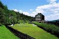 Orea Wellness Hotel Horizont Zelezna Ruda